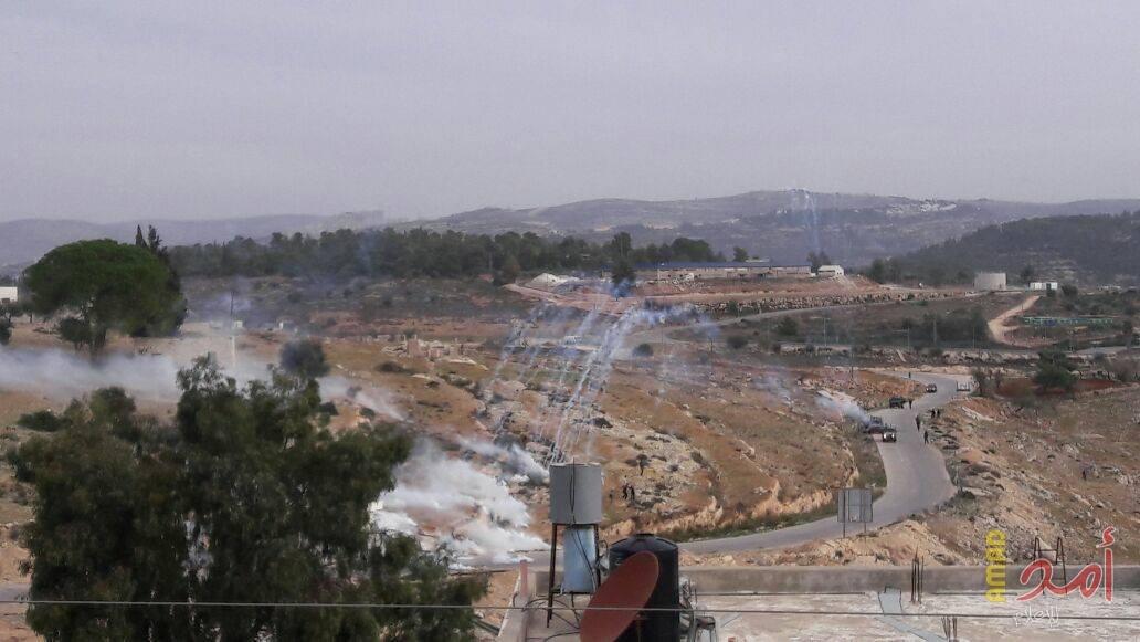 قرية النبي صالح - مواجهات