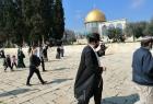 """(127) مستوطناً يقتحمون ساحات """"المسجد الأقصى"""" بحراسة مشددة"""