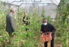 غزة: الإغاثة الزراعية تعقد ورشة حول تقدير احتياجات المزارعات في رفح الشرقية
