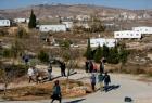 مستوطنون يضرمون النار بأراض زراعية شمال نابلس