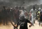 """إصابات واعتقالات خلال مواجهات مع قوات الاحتلال في بلدة """"اليامون"""" بجنين"""