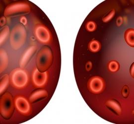 أهم الفيتامينات لتعزيز ضخ الهيموجلوبين فى الدم