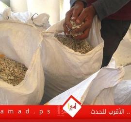 شاهد - النفايات البلاستيكية وسيلة لكبح البطالة في غزة