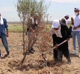 الإغاثة الزراعية : العاملات في قطاع الزراعة يتعرضن لانتهاكات متواصلة