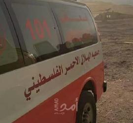 """أريحا: جيش الاحتلال يطلق النار تجاه شابين أثناء اعتقالهما في """"الجفتلك"""""""