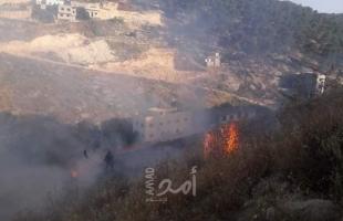 """اشتعال النيران في """"المراعي"""" غرب الأغوار بفعل تدريبات لجيش الاحتلال"""