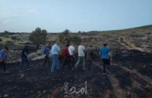 جنين: النيران تأتي على 10 دونمات زراعية في فقوعة