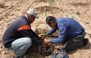 العمل الزراعي يرصد انتهاكات سلطات الاحتلال بحق المزارعين خلال شهر يونيو