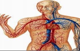 7 علامات تنذرك بالإصابة بالجلطة القلبية