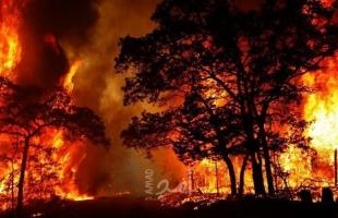 أستراليا: دوائر الإطفاء تعلن نجاحها في السيطره على الحرائق