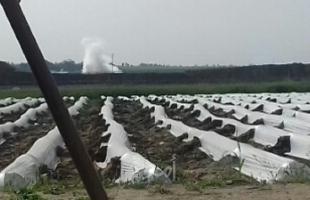 قوات الاحتلال تطلق قنابل الغاز تجاه الأراضي ورعاة الأغنام شمال قطاع غزة