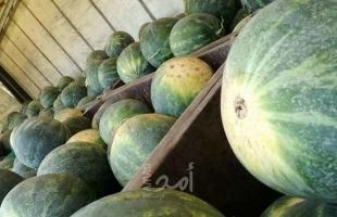 ضبط 700 كيلو من البطيخ الفاسد جنوب قطاع غزة