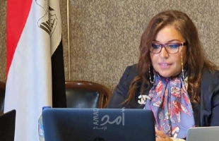 """عبر """"الفيديو كونفرانس"""".. جولة للمشاورات السياسية بين مصر والبرازيل"""