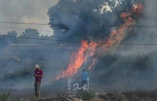 استمرار اندلاع الحرائق في أحراش بلدات إسرائيلية بفعل بالونات حارقة أطلقت من غزة