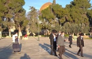 الخارجية الفلسطينية: جرائم المستوطنين تفضح من يحاولون حماية الاحتلال من تحقيقات الجنائية