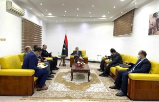 شكري يؤكد على دور مصر في عملية السلام الليبية