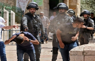 مدير هيومن رايتس ونائب بلجيكي يدعوان لمواجهة الاحتلال ووقف سياسة الإفلات من العقاب