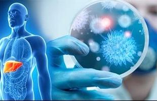 دراسة تكشف عن مشروب ساخن يحمي من سرطان الكبد