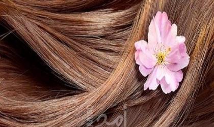 وصفات طبيعية تساعد في تسريع نمو الشعر