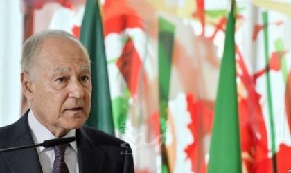 أبو الغيط وسامح شكري يبحثان سبل تطوير الشراكة العربية الأفريقية