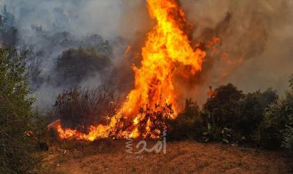 شاهد.. النيران تحرق قرية صينية عمرها 400 عام