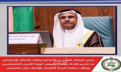 رئيس البرلمان العربي يطالب بتحرك عاجل لوقف انتهاكات الحوثيين.. ويرحب بالحوار الوطني في الصومال