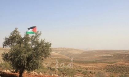 مستوطنون يتلفون 140 شتلة زيتون في بلدة الخضر جنوب بيت لحم