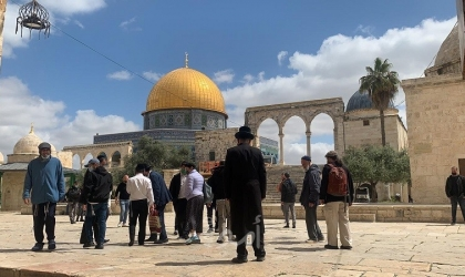 """القدس: (855) مستوطناً اقتحموا ساحات """"الأقصى"""" خلال الأسبوع الماضي"""