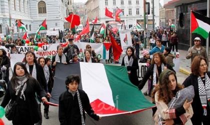 كاليفورنيا: أنصار منظمة استيطانية يعتدون على متضامنين مع فلسطين