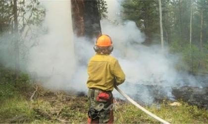 تونس تُسيطر على حرائق الغابات عند الحدود مع الجزائر