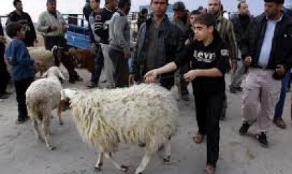 """اقتصاد غزة: مستمرون بمراقبة النشاطات الاقتصادية خلال """"عيد الأضحى"""""""