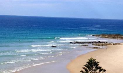 ما هي الآفة المروعة التي تغزو أستراليا؟