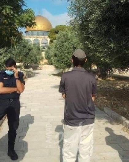 (112) مستوطن يقتحمون ساحات المسجد الأقصى بحراسة مشددة