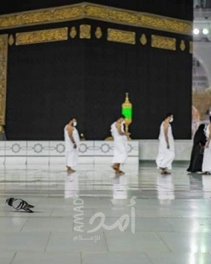 السعودية تعلن البدء بتلقي طلبات العمرة من خارج أراضيها