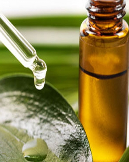 10 فوائد صحية لزيت شجرة الشاى