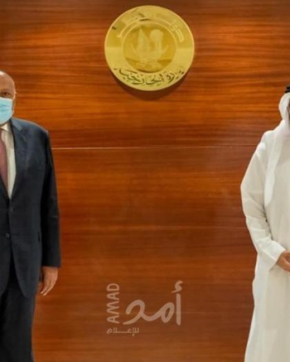 وزيرا خارجية مصر وقطر يؤكدان أهمية التضامن العربي بقضية سد النهضة وتفعيل أطر التعاون الثنائي